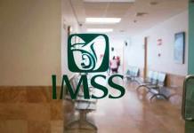 Diputada propone que desempleados por Covid conserven IMSS