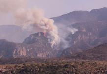 Alto riesgo de incendio forestal en 400 mil ha