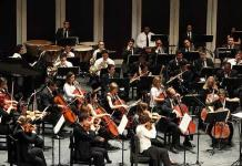 La Novena Sinfonía de Beethoven revela nuevos detalles sobre el cerebro humano