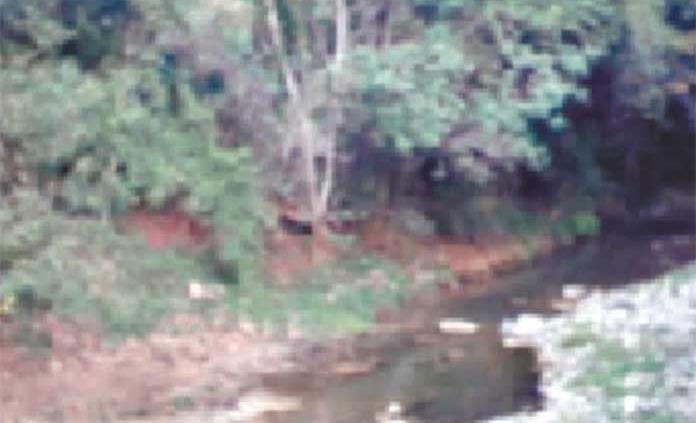 Arroyos de Huehuetlán están secos