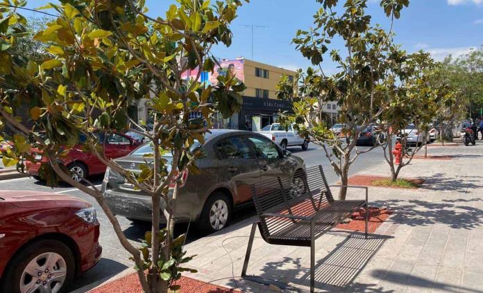Trabajos de rehabilitación en la avenida Carranza, prácticamente concluidos: Seduvop
