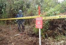 EEUU dice que vetará las minas antipersona, que Trump volvió a autorizar