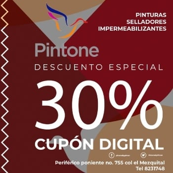 www.pintone.mx