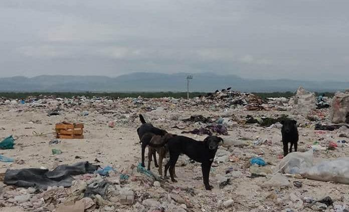 Construirán nuevo relleno sanitario en Ciudad Fernández