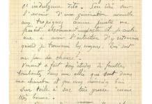 Subastada por más de 200 mil euros una carta conjunta de Gauguin y Van Gogh