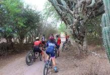 Promoverán tour de avistamiento de aves en bici