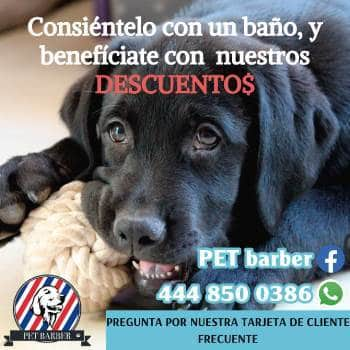 https://www.facebook.com/PET-Barber-510391592708153