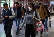 Prematuro, hablar de cepa de gripe con potencial pandémico