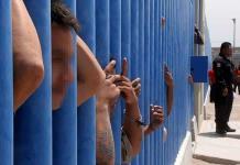 Ignoran diputados la ley de amnistía