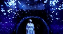 Abre el mayor tanque acuático panorámico japonés para rodearse de medusas (FOTOS)