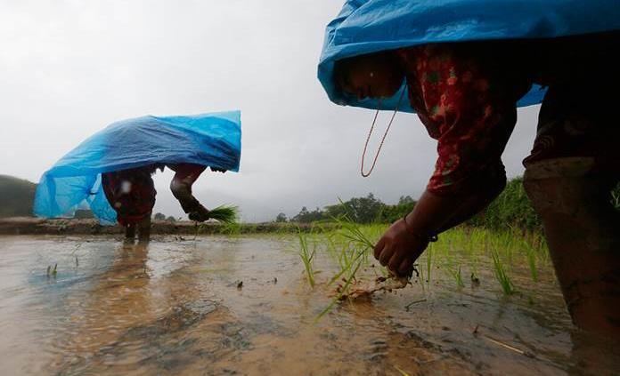 Al menos 16 muertos y 45 desaparecidos por las lluvias del monzón en Nepal
