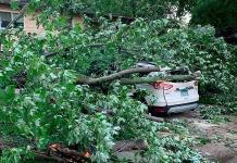 Tornados en EU cobran una vida