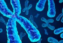 Científicos logran la primera secuencia completa de un cromosoma humano