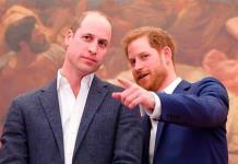 Príncipes Guillermo y Enrique denunciados por fondos de caridad