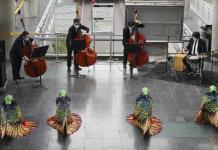 Filarmónica de Bogotá brinda concierto callejero