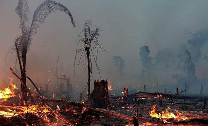 Aumentan los incendios en la Amazonía