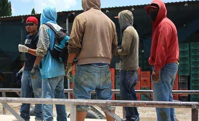 Se precariza salario en SL