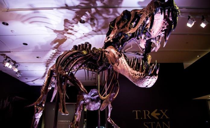 ¿Quieres poner un Tiranosaurio Rex en tu vida? Christies prepara subasta