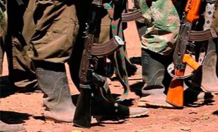 Difunden que FARC torturó y fusiló a niños de sus filas