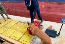 Comparte Marina imágenes de operación subacuática para decomiso de cocaína colombiana