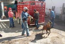 Entregan apoyo a caprinocultores