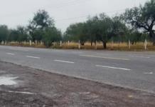 Atropellan y dan muerte a una mujer en carretera Rioverde-Valles