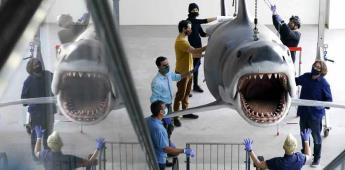 Bruce, el último Tiburón, llega al Museo de la Academia