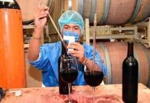 Galardones internacionales entregados en septiembre a vinos potosinos ponen en el mapa nacional y mundial a la entidad