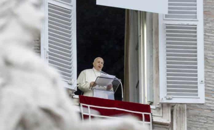 Papa Francisco: Árbol de Navidad y pesebre son signos de esperanza