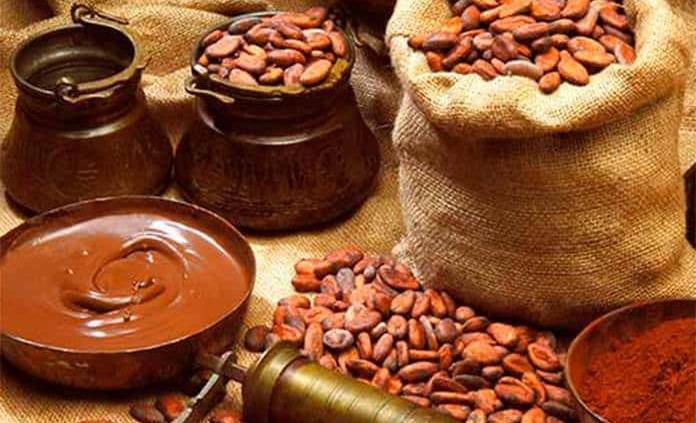 Chiapaneco, uno de los mejores cacaos de Cocoa of Excellence