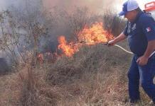 Incendio consume media hectárea de pastizal en Valles