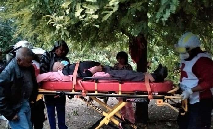 Hospitalizan a un hombre de 82 años de edad tras caer de un árbol