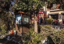 Tras nevada, Madrid lidia con basura y escombros acumulados