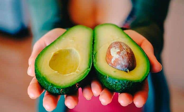El aguacate, un fruto mexicano para el mundo