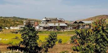Antiguo ingenio azucarero abraza el arte en un recóndito paraje brasileño