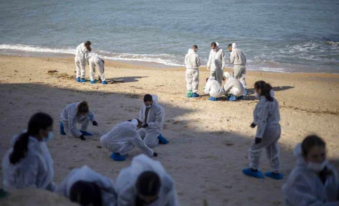Ministra israelí ratifica denuncia de terrorismo ambiental