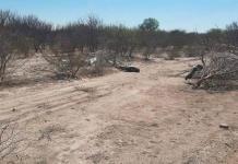 A puñaladas matan a hombre en Matehuala