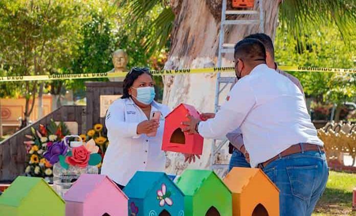 Colocarán casas para aves en los árboles de la plaza