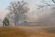 Incendios devastan varias zonas de Valles y Tamasopo
