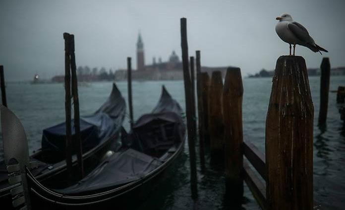 La arquitectura vuelve a Venecia en una Bienal con público