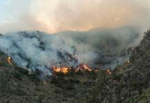Sigue activo incendio forestal en San Bartolo