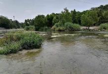 Reinician riego agrícola