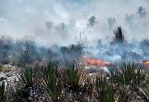 Controlado, el incendio en San Bartolo
