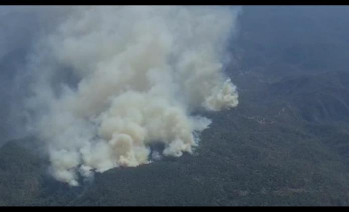 Combaten brigadistas dos incendios forestales en Rioverde y uno en San Nicolás Tolentino