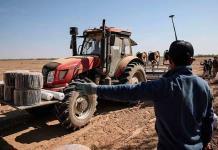 Algodón de Xinjiang: ¿trabajadores forzados o voluntarios?