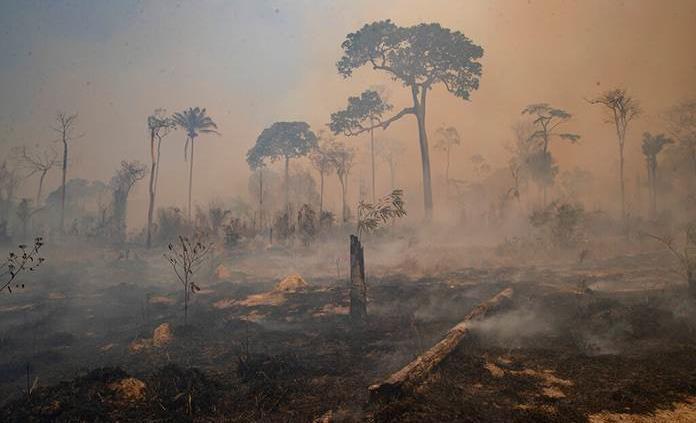 Más de 6,000 guardianes ayudarán a combatir incendios en selvas de Brasil
