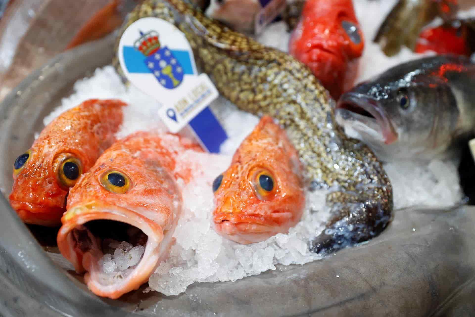 Pescado de procedencia gallega.