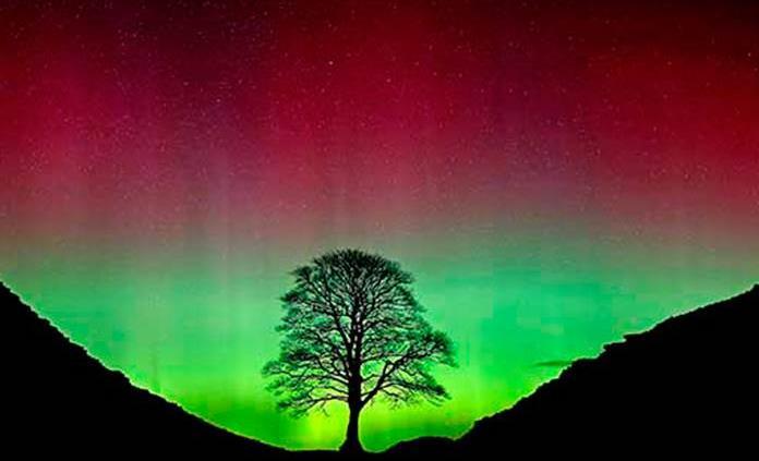 Las auroras boreales son causadas por poderosas ondas electromagnéticas