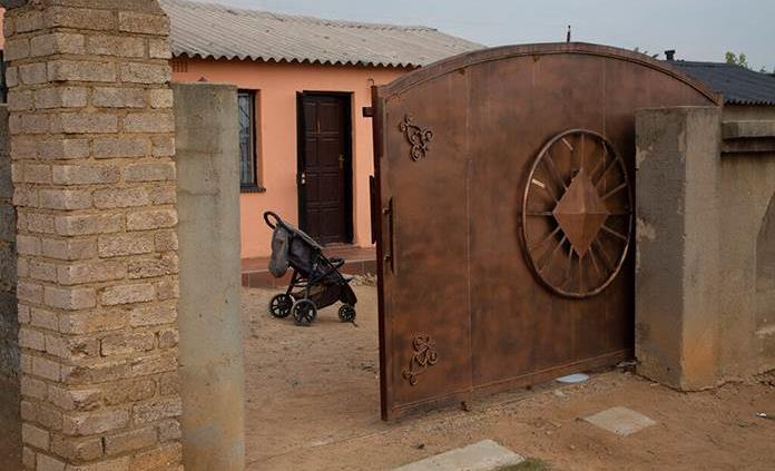 Dudas sobre si realmente nacieron decallizos en Sudáfrica