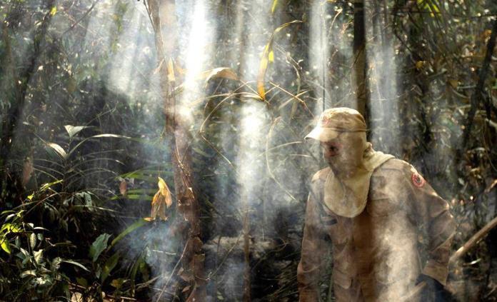 Indígenas con tecnología salvarían 123,000 hectáreas al año en Amazonía